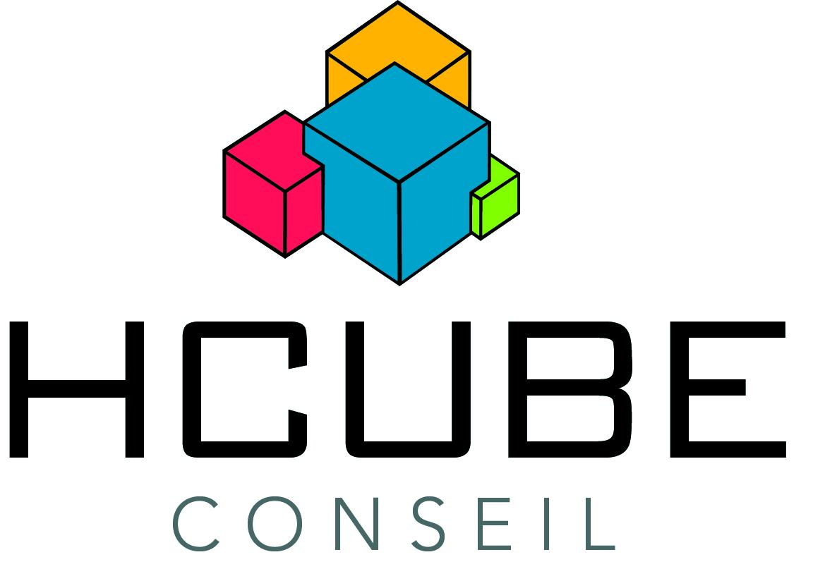 Client VSActivity : HCUBE Conseil
